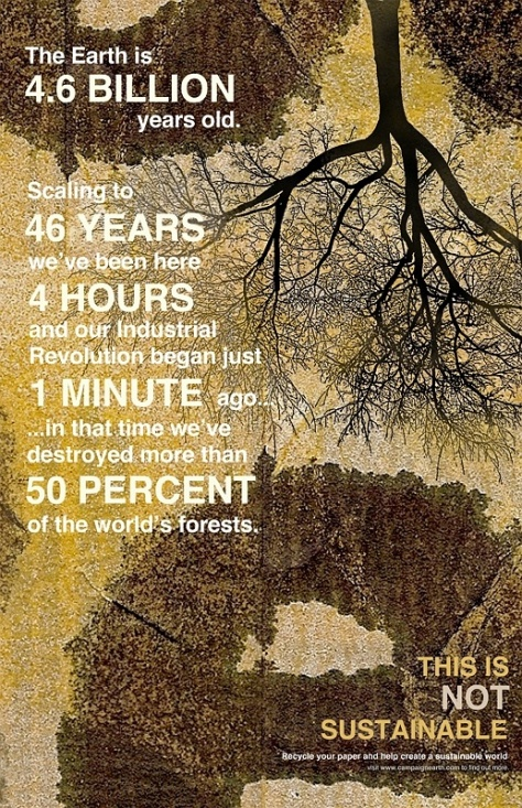 Deforestation new 04