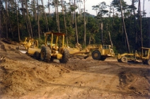 Environmental - Deforestation 08