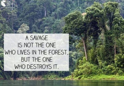 Environmental - Deforestation avage not the one lives in the forest
