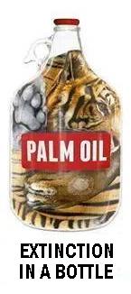 Environmental - Deforestation extinction in a bottle