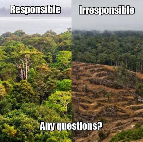 Environmental - Deforestation irresponsible