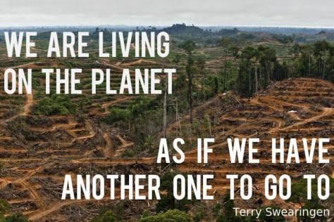 Environmental - Deforestation New 01