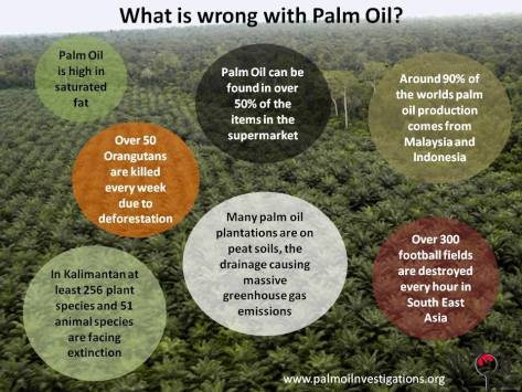Environmental - Deforestation what's wrong with palm oil