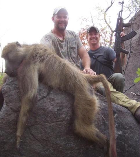 Monkeys - Trophy hunted 6