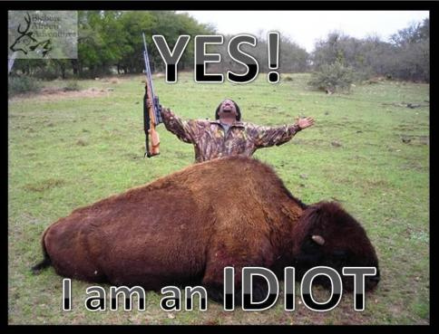 Message - Yes I am an idiot