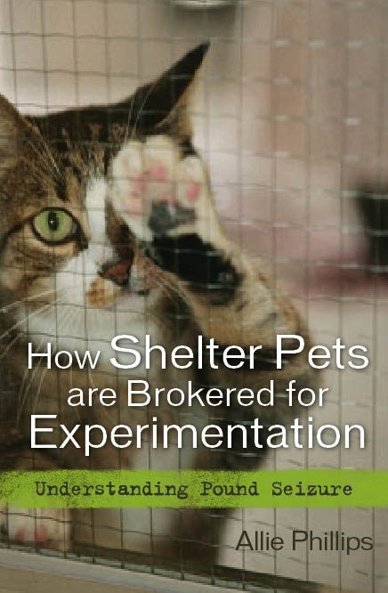 Homeless pets - Abandoned how shelter pets are brokered for experimentation