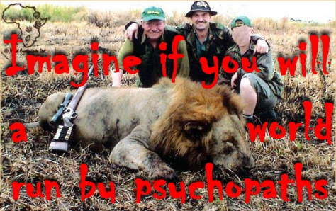 Lions 22 1
