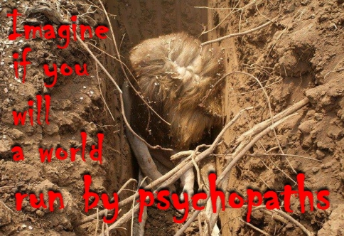 Trophy hunters - Psychos imagine a world run lion