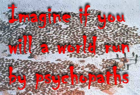 Trophy hunters - Psychos imagine seals