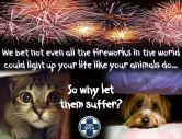 Cats and dogs - Medical safety fireworks 1