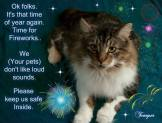 Cats and dogs - Medical safety fireworks 2