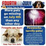 Cats and dogs - Medical safety fireworks 3