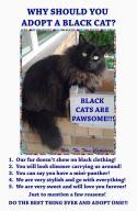 Cats - Black are pawsome