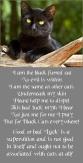 Cats - Black poem use