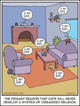 Cats - Cartoon I am God