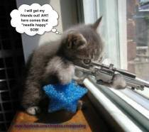 Cats - Kitten sniping
