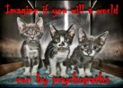 Cats - Psychopaths imagine a world 02