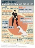 Dogs - BSL infographic