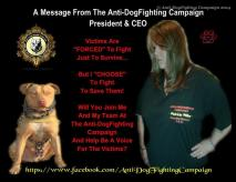 Dogs - Fighting campaign FB message