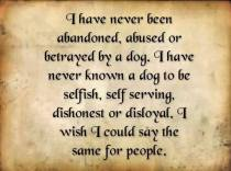 Dogs - Never been abandoned by