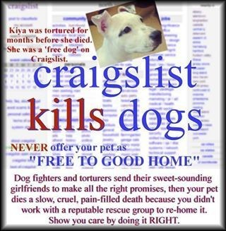 Homeless pets – Craigslist advertise free pets boycott | END Trophy