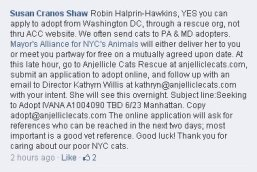 Homeless pets - Help foster in NYC