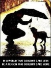 Homeless pets - Help in a world that couldn't care less, be a person who