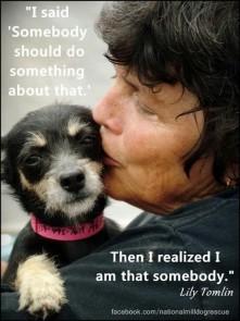 Homeless pets - Help someone do something dog