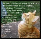 Homeless pets - Help speak up for