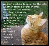 Homeless pets - Help speak up for