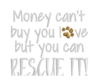 Homeless pets - Help you can't buy love but you can rescue it 05