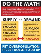 Homeless pets - Kill do the math