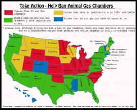 Homeless pets - Kill gassing map US