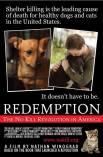 Homeless pets - Kill no kill advocacy 03