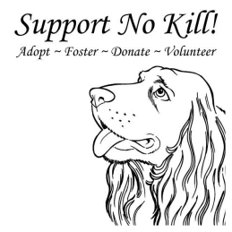 Homeless pets - Kill no kill support