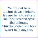 Homeless pets - Kill shelters not here to shut down go no kill