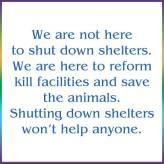 Homeless pets - Kill shelters not here to shut down go no kill