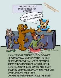 Homeless pets - Kill shelters reasons 2