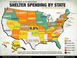 Homeless pets - Kill shelters spending by state