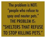 Homeless pets - Kill shelters