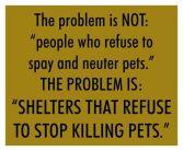 Homeless pets - Kill shelters