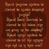 Homeless pets - Kill should they be allowed to kill