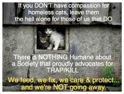 Homeless pets - Kill stop use TNR