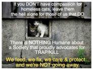 Homeless pets - Kill stop use TNR