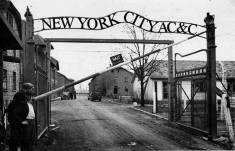 Homeless pets - NYC AC&C Auschwitz gates