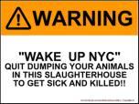 Homeless pets - NYC AC&C Mayor Bill De Blasio 01