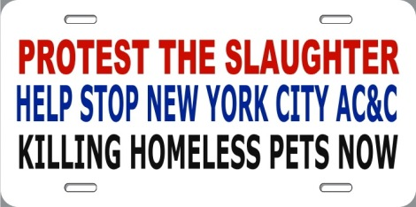 Homeless pets - NYC AC&C protest the slaughter