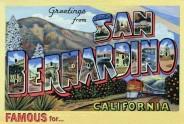 Homeless pets - San Bernardino famous for