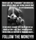 Mills farms breeders - 4 Don't buy which dog kill first USE