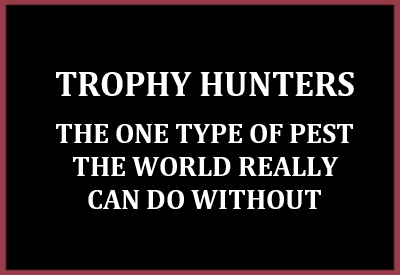 Trophy hunters - Conservation trophy hunters pests
